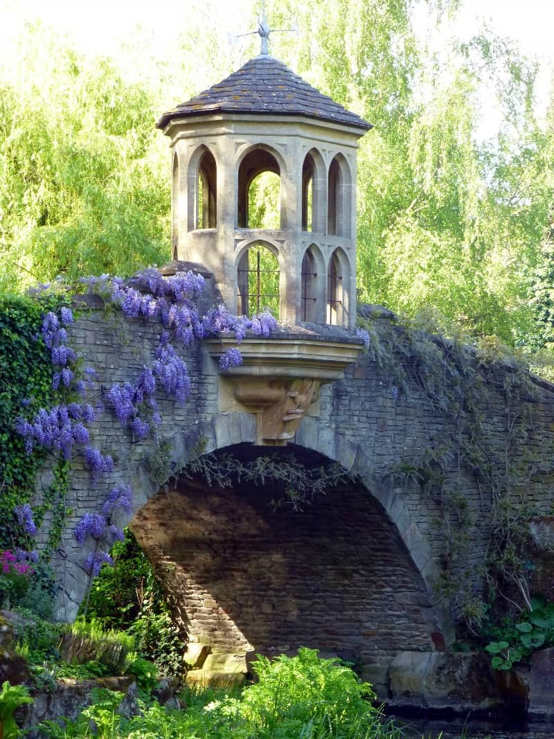 Bridge covered with wisteria flowers