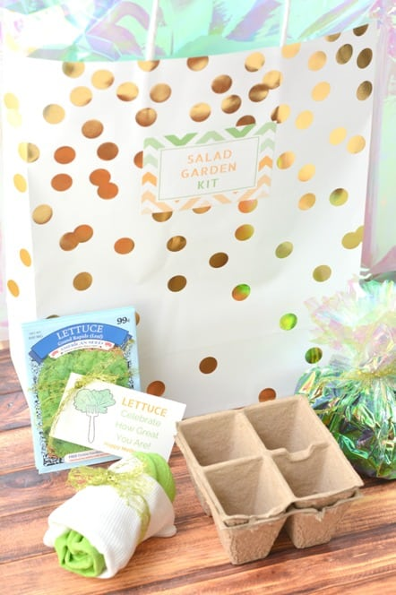 Salad garden kit