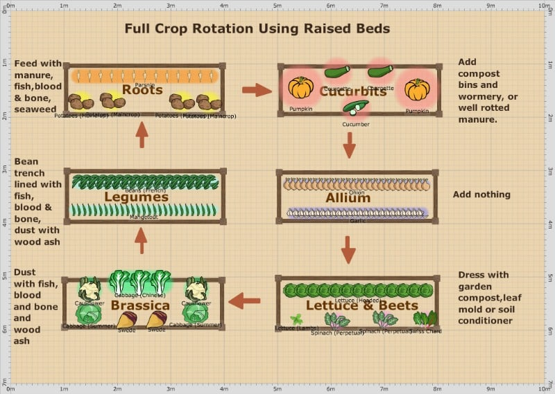 Full crop rotation using raised beds