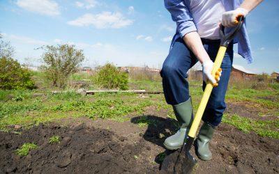 Man digging in the garden