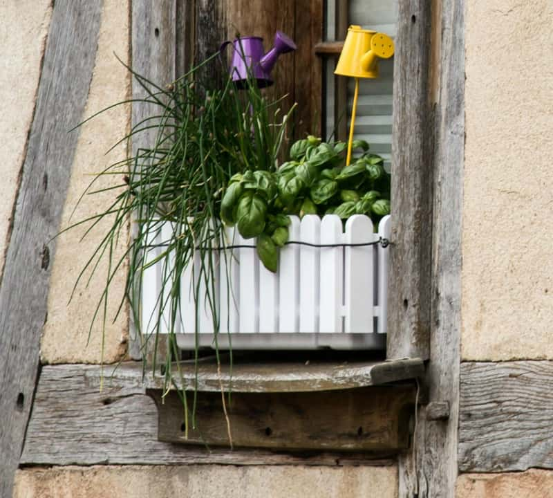Window herb box