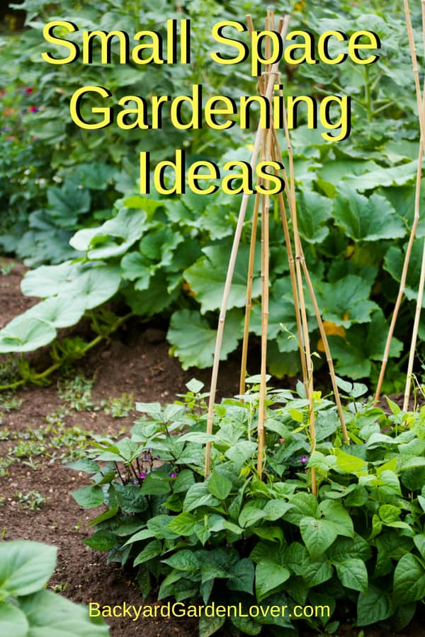 Looking for some small space gardening ideas? Here are tips for for growing vegetables, fruits and herbs even if all you have is an apartment balcony, a small patio, or a tiny backyard. Use the square foot method, plant in pots, and use food as landscaping. then enjoy fresh food from your own garden.