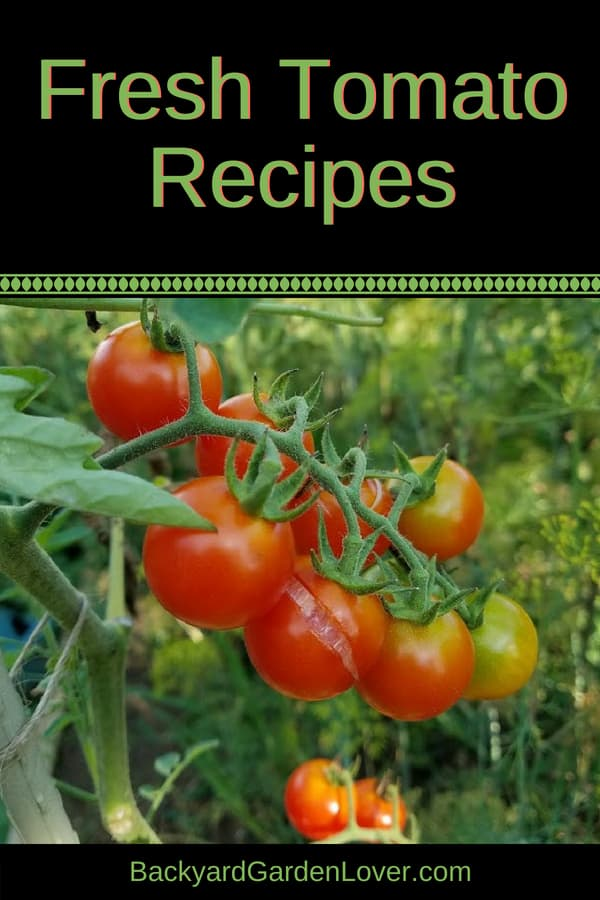 If your garden is producing loads of tomatoes, get ready to enjoy these fresh tomato recipes: from appetizers, to salads, sauces, pasta, soups and roasted tomatoes, you can use up your garden harvest to make easy and healthy summer dinners. YUM! #tomatoes #freshtomatoes #tomatosoup #tomatosalad #tomatosauce #tomatoappetizers #roastedtomatoes