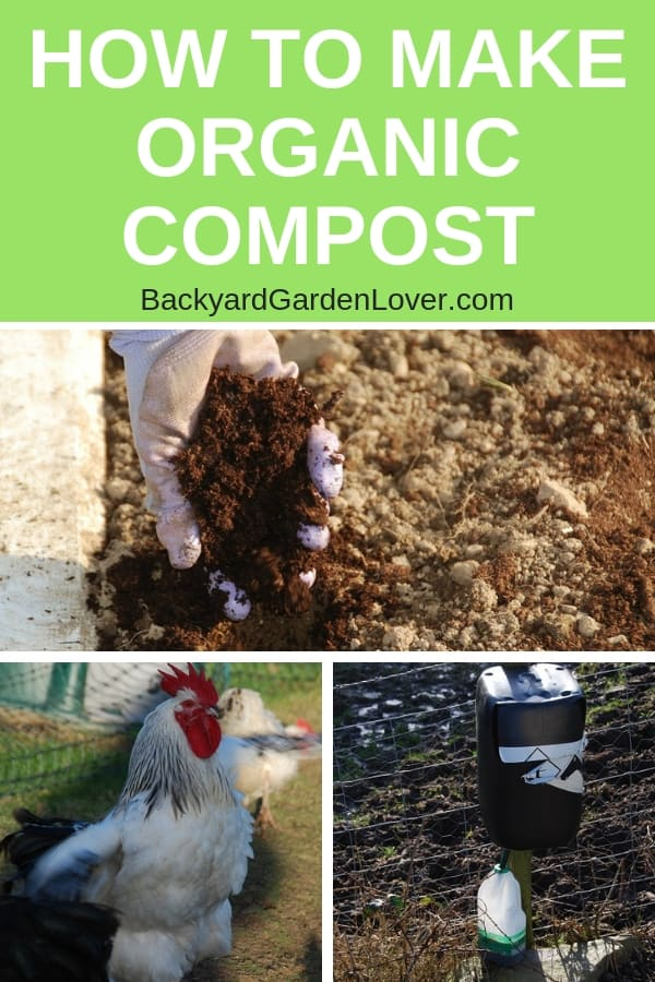 Collage of things that help make organic compost