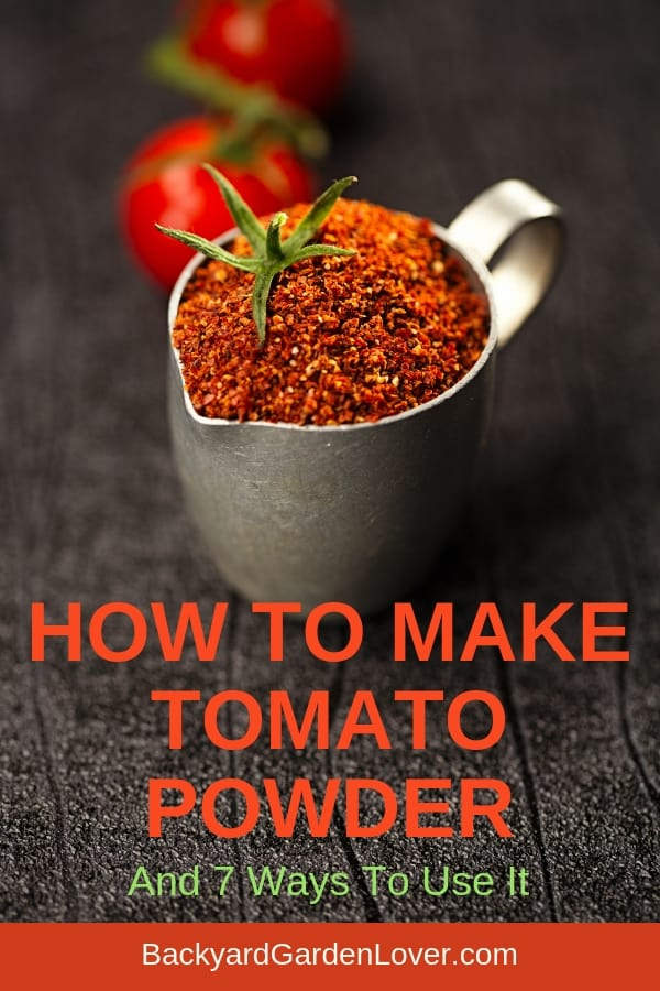 How To Make Tomato Powder #tomatoes #preservetomatoes #harvest #tomatopowder