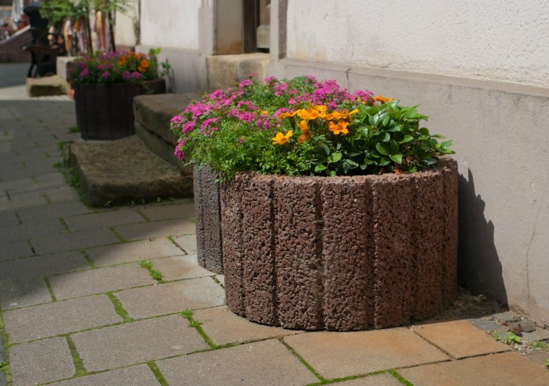 Large stone planters with blooming flowers on a sidewalk