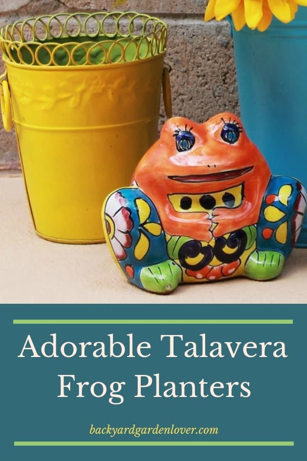 Have you ever seen a Talavera planter? Hand-crafted, painted and glgazed, they're happiness makers you can tuck away in any corner of your house or garden. Thye come in many sizes and shapes. Here are a few of my favorite Talavsera frog planters. So cute! #talavera #mexicanpottery #containergardening #splashofcolor #gardencontainer #vibreantcolors #handcrafted #handmade