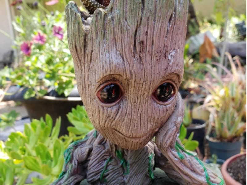 Adorable baby groot flower pot sitting on my patio table