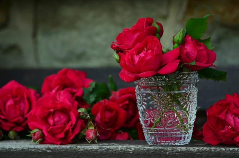 Red roses in small crystal vase