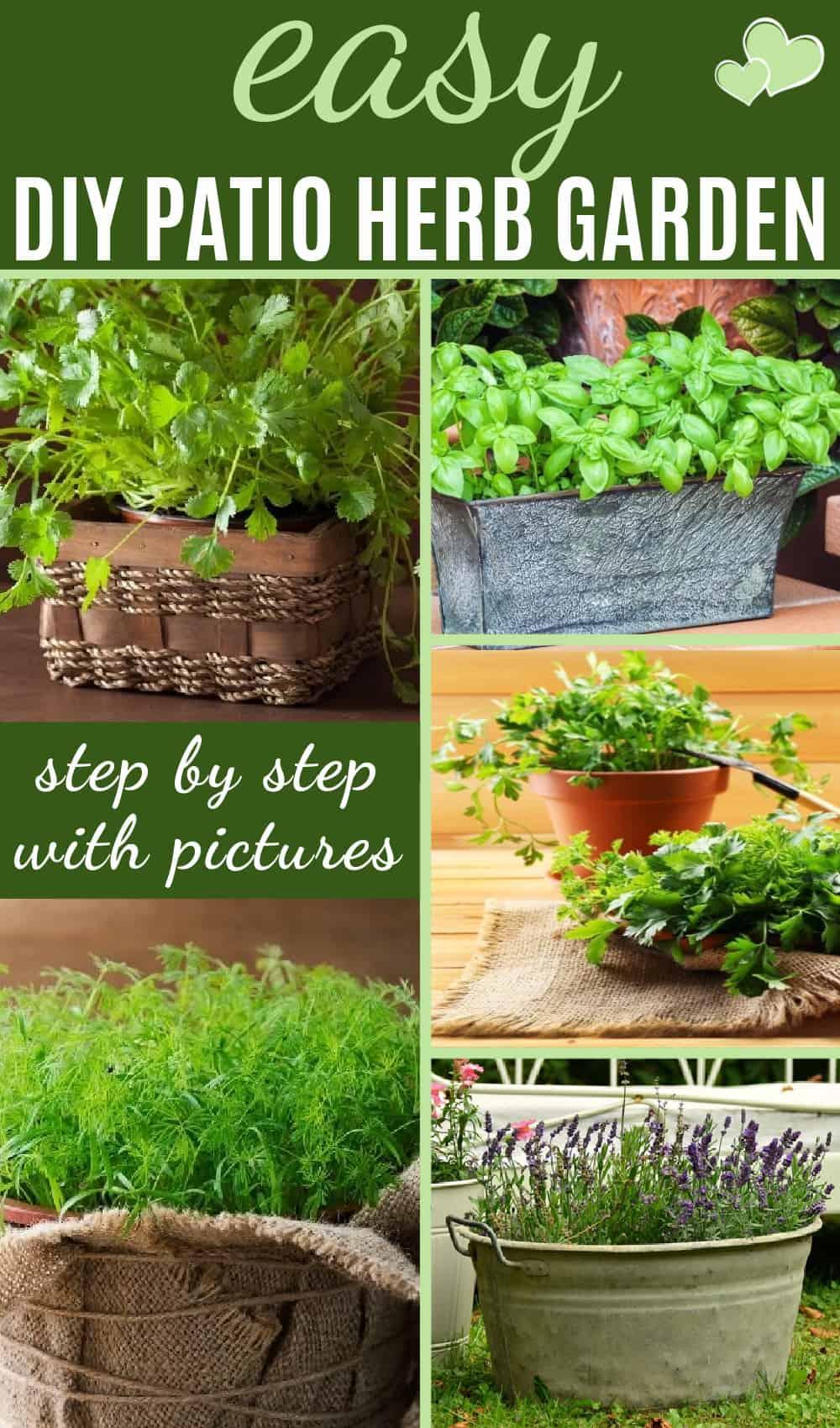 Easy DIY patio herb garden