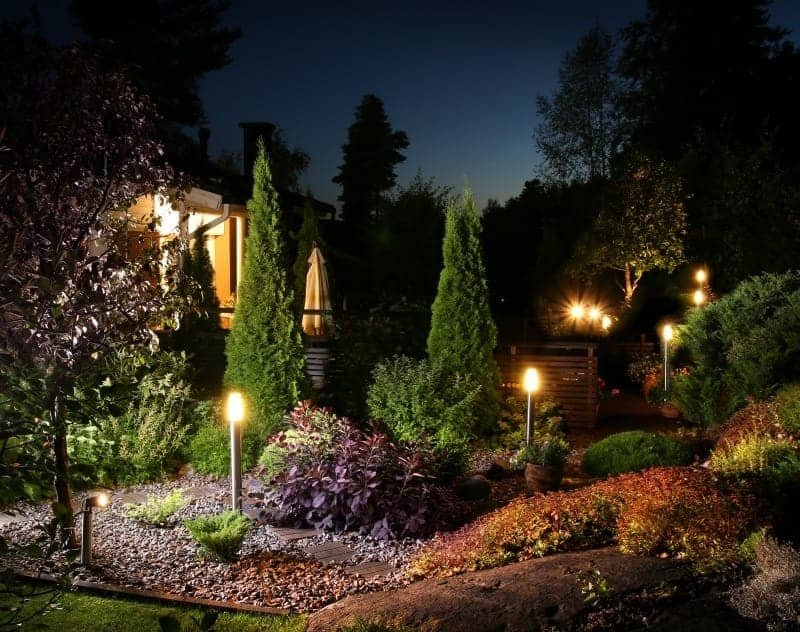 A garden lit-up at night