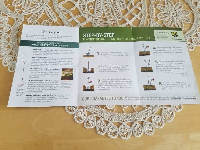 Planting tree instructions