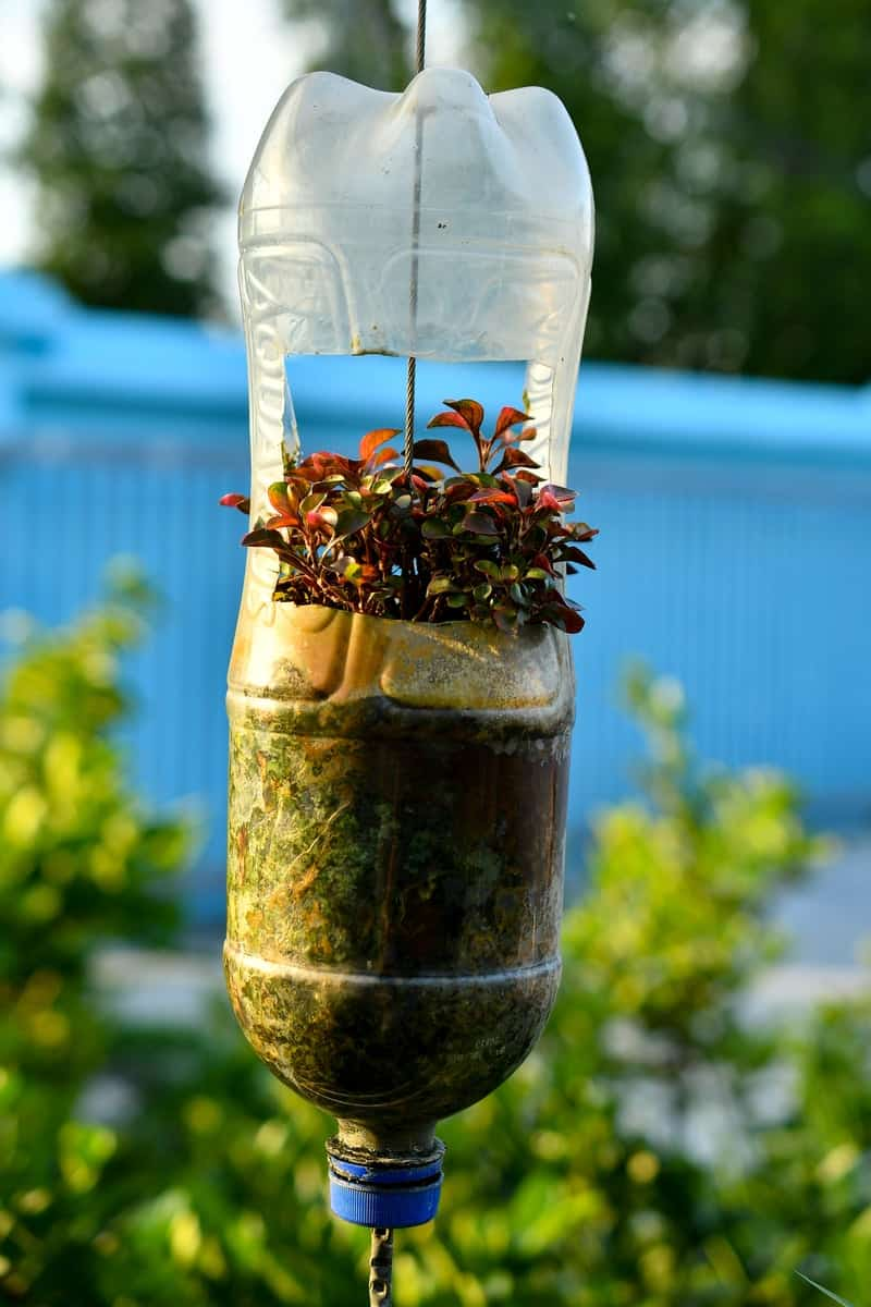 Recycled bottle flower pot