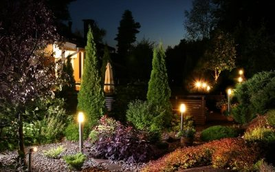 Garden lights in the evernig