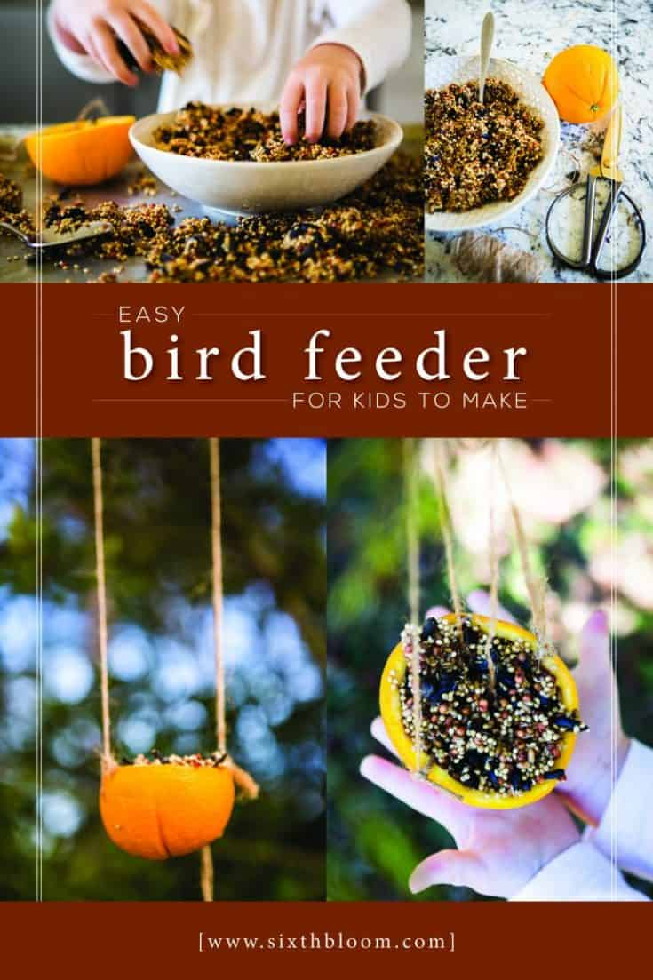 Easy Bird Feeder Kids Can Make
