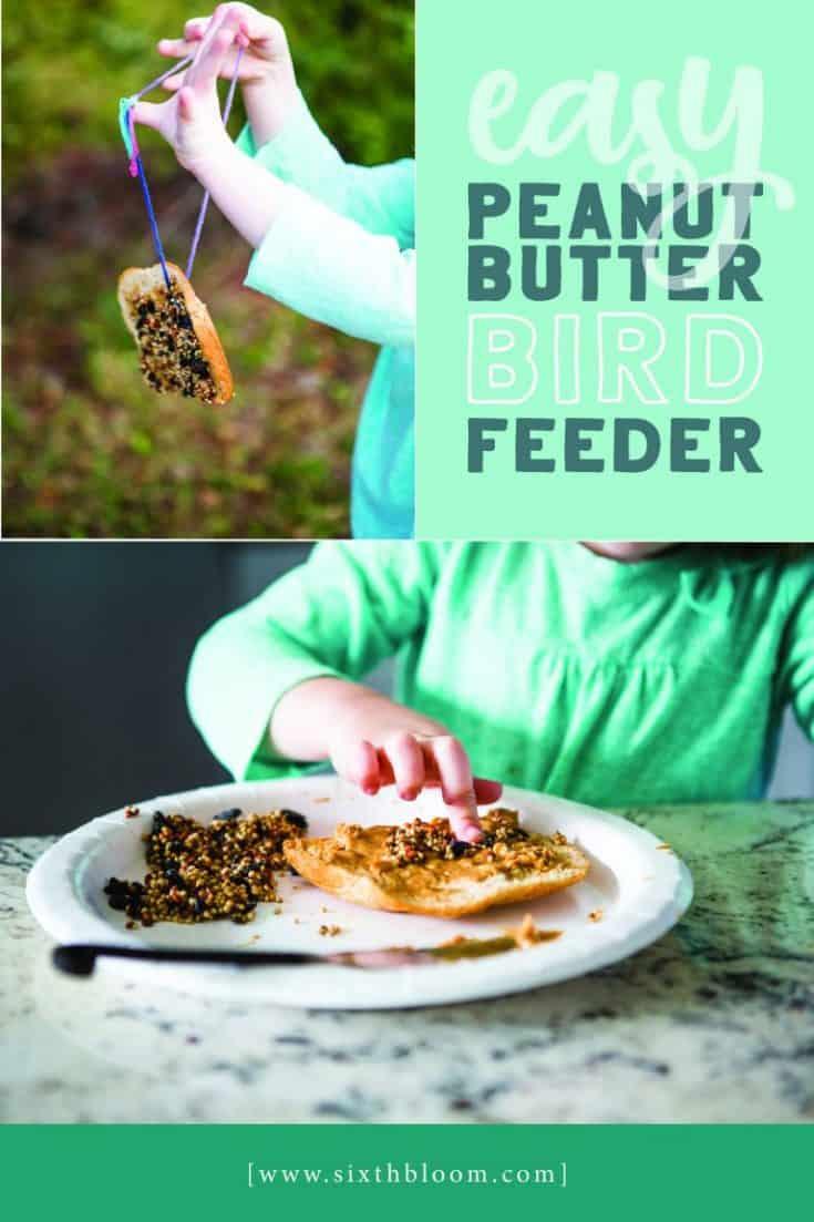 Easy Peanut Butter Bird Feeder
