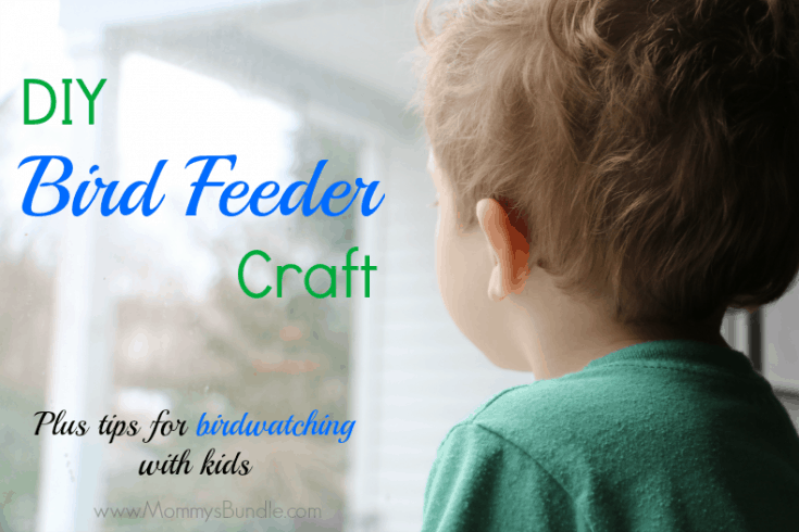 DIY Bird Feeder Craft & Bird Watching Tips for Kids