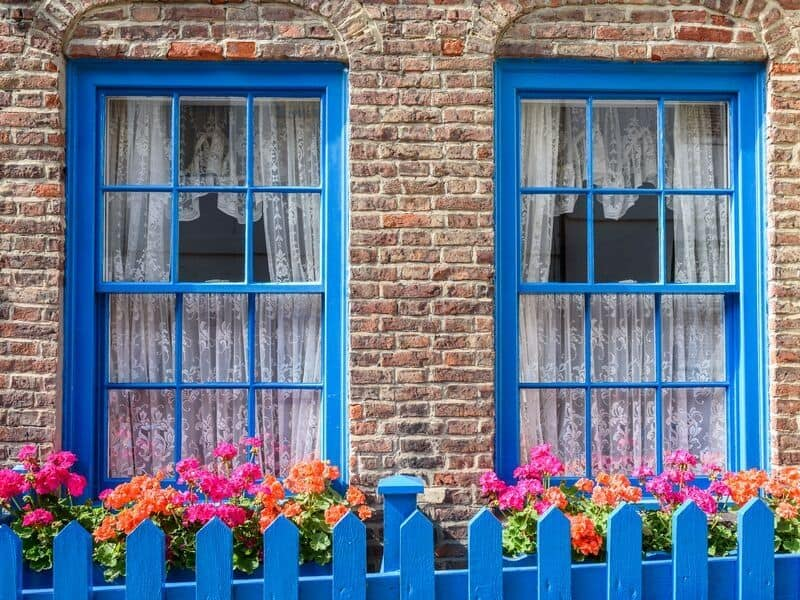 Blue fence and window frames