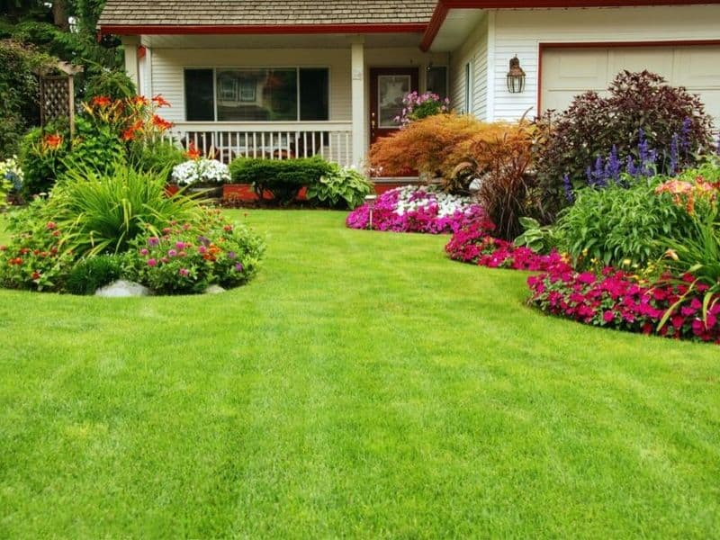 Beautifully manicured lawn