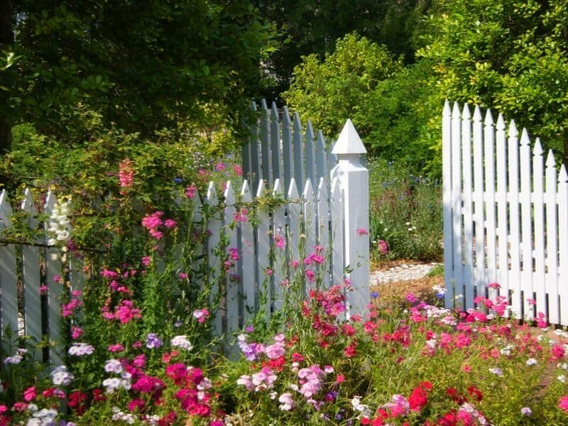 Pretty pink flowers in front of a white picket fence that create a cottage-style look