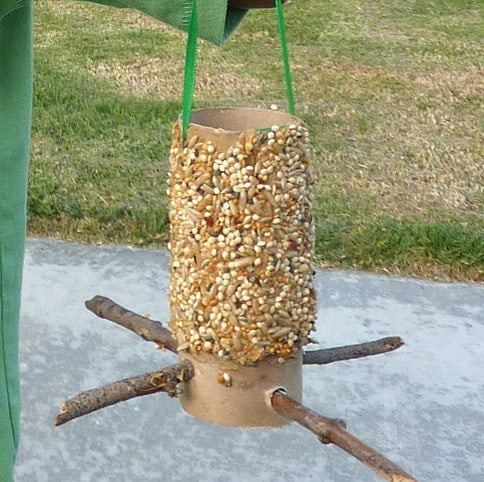 How To Make A Toilet Paper Roll Bird Feeder Craft