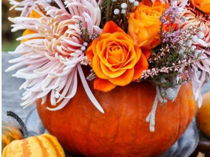 10 Pumpkin Planter Ideas For Stunning Fall Decor