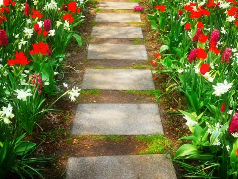 Red and white spring walkway