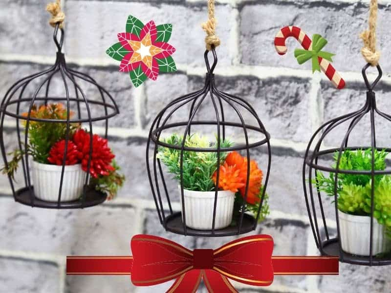 Christmas gifts for garden lovers