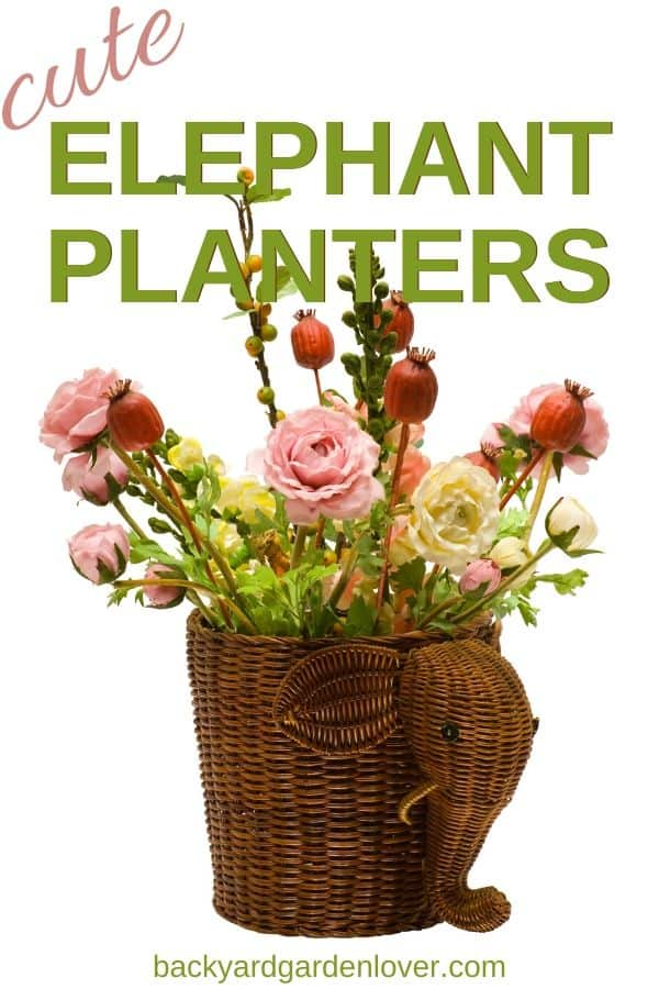 Looking for a unique container for your favorite plants? You must take a look at these adorable elephant planters: from small and cute to ceramic and vintage, there's an elephant container for every taste. Great for gifts too! #elephant #animalplanters #gardengifts #containergardening #greenthumb #plantlover