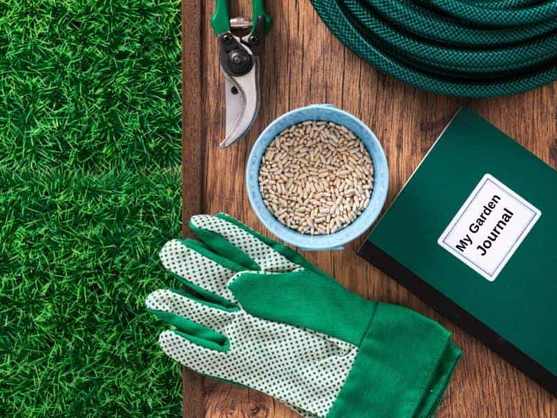 Garden accessories, including gloves, pruners and a garden journal