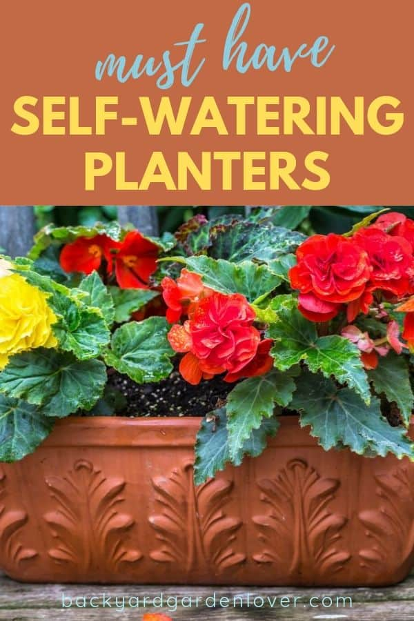 Best self watering planters for indoor and outdoors container gardens. #selfwatering #containergarden #planters #gardening #plantlover
