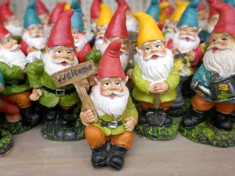 Welcoming gnomes