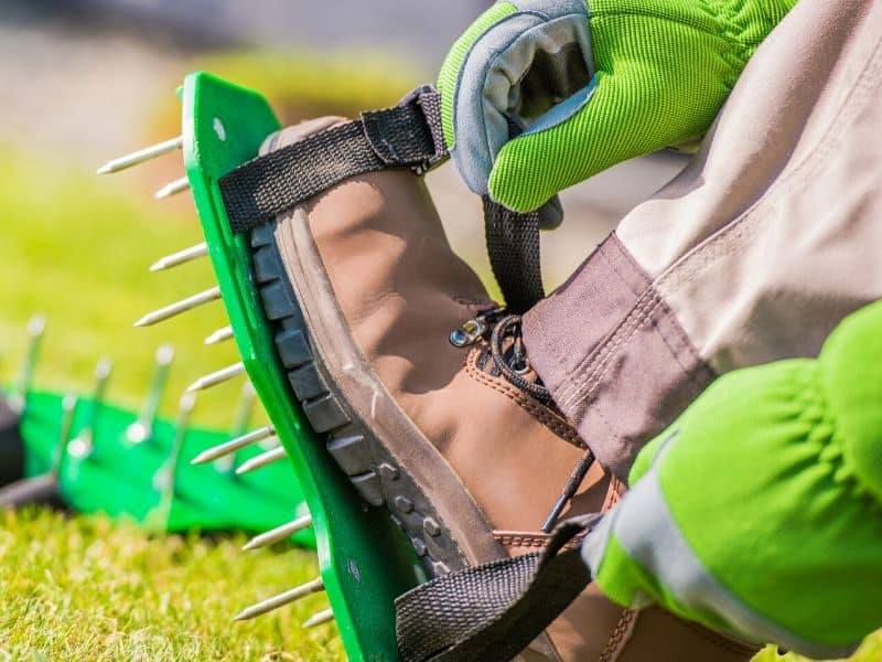 Lawn aerator spiky shoes
