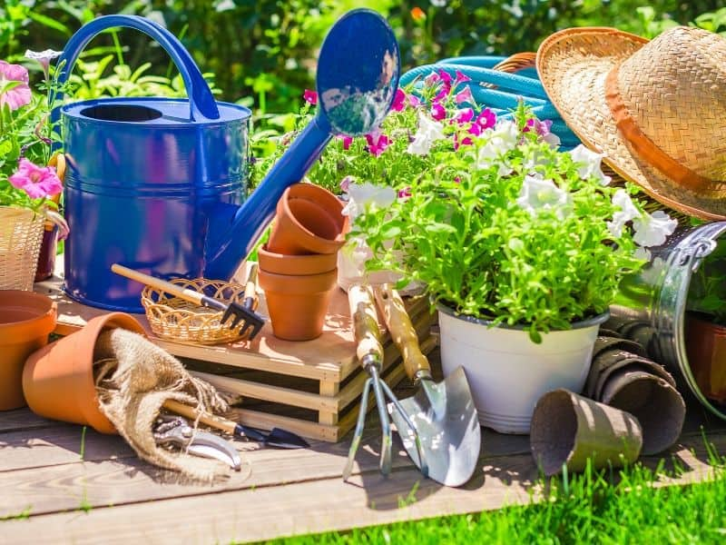 Gardening accessories: watering can, flower pots, sun hat, garden tools and more