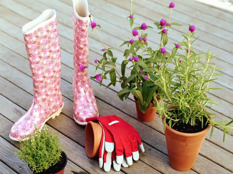 Gardening gloves and boots