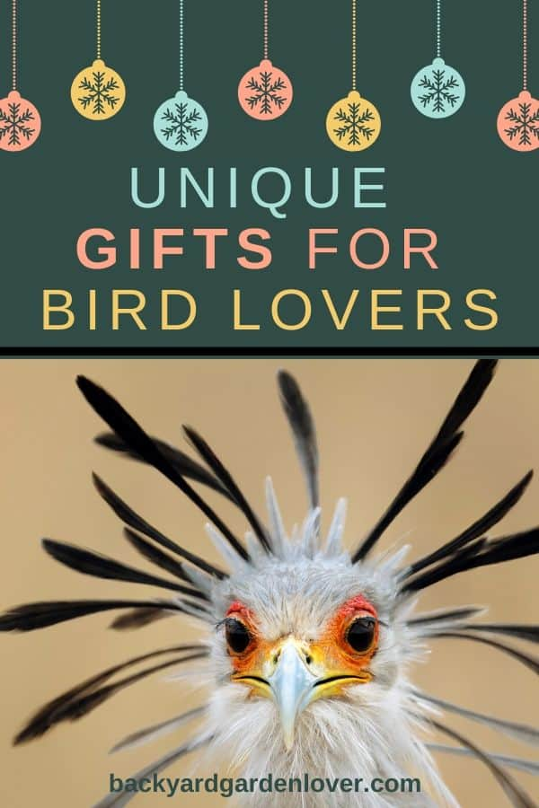 Unique gifts for bird lovers  - Pinterest image