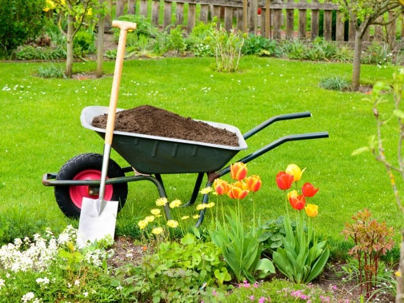 Wheelbarrow filled with garden soil