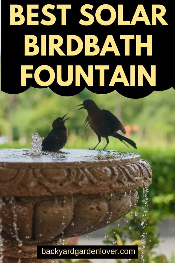 Best solar birdbath fountain - Pinterest image