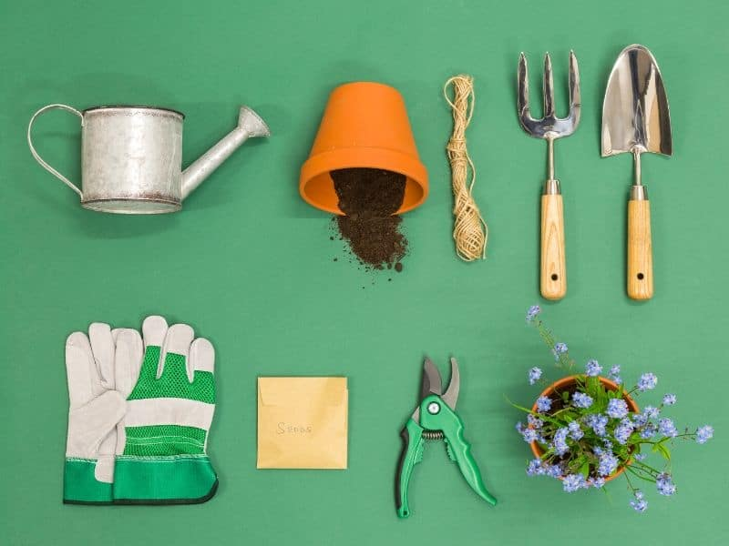 Amazon gardening products