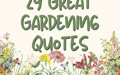 Great gardening quotes