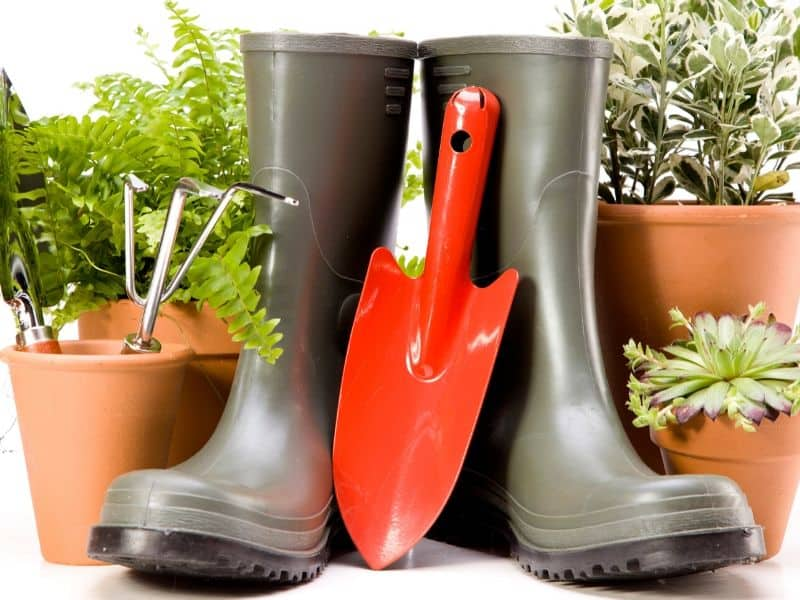 Gardening accessories: pots, boots, mini shovel and some plants