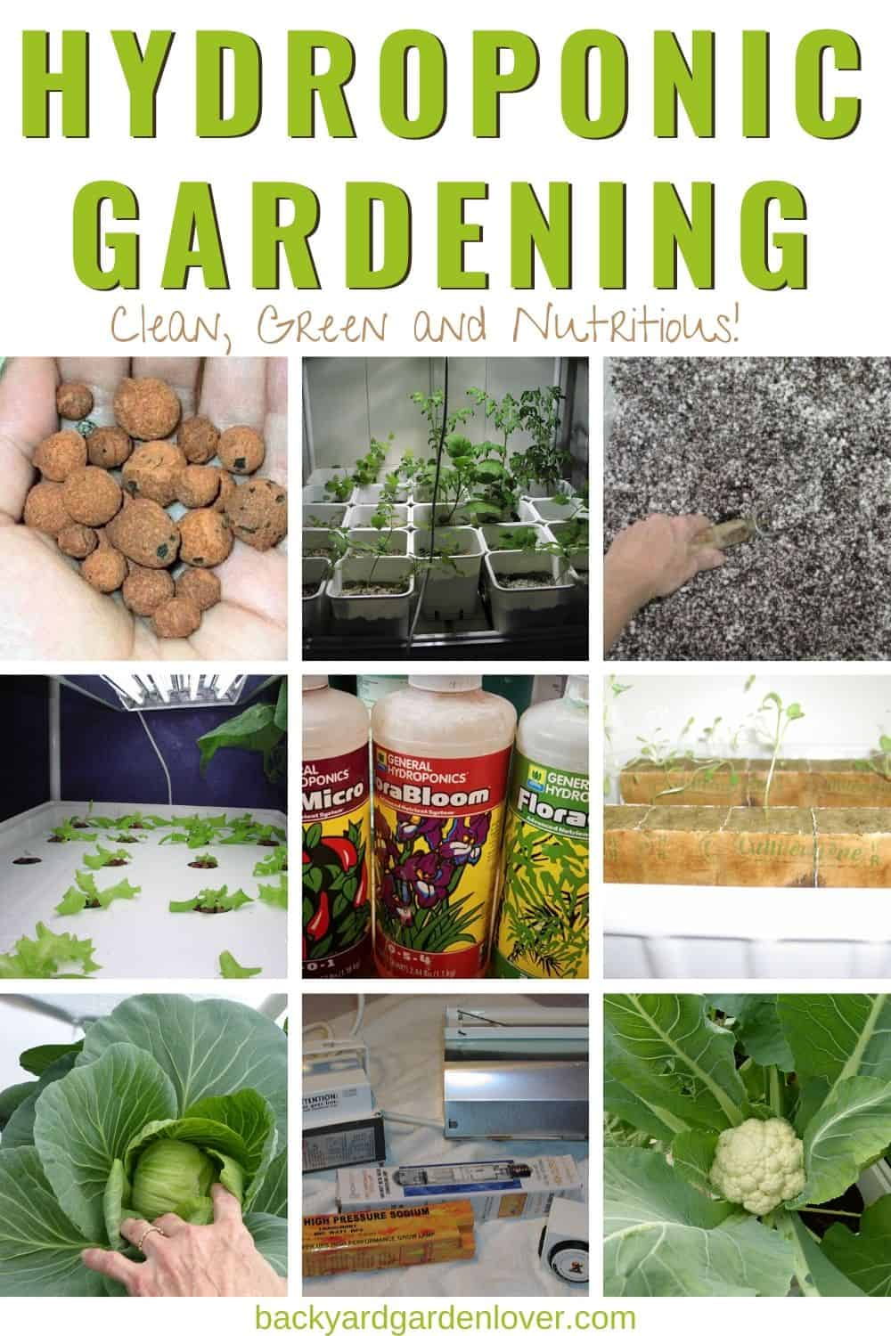 Hydroponic gardening in pictures - Pinterest image