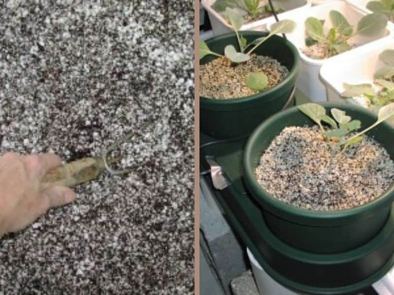 Perlite and coco coir mixture
