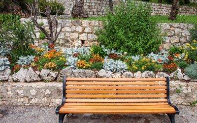 Beautiful garden bench
