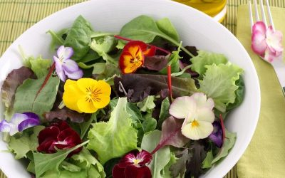 Salad decorated with edible flowers