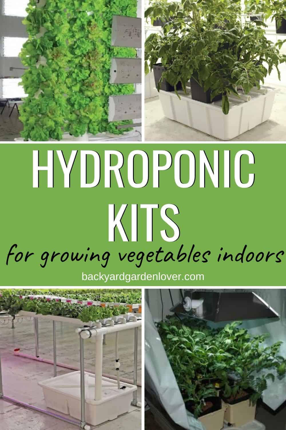 Hydroponic kits for growing vegetables indoors
