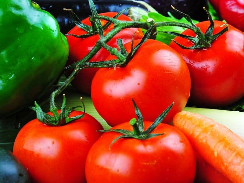 Fresh vegetables: tomatoes, green peppers, eggplants, carrots.