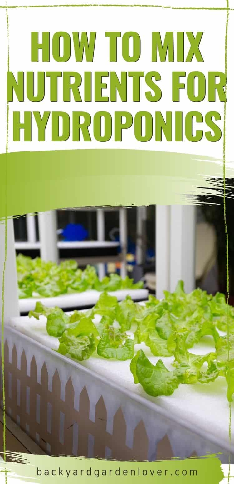 How to mix nutrients for hydroponics - Pinterest image