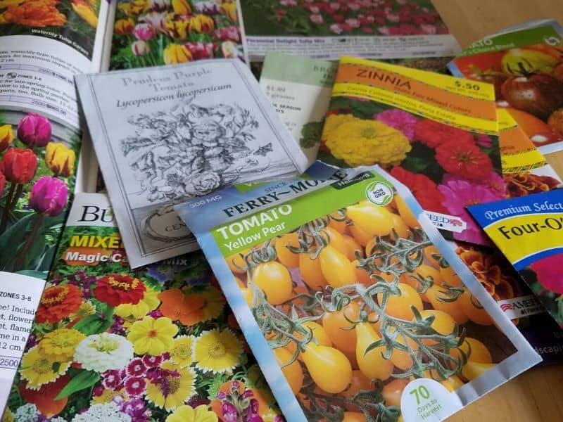Planning my garden - garden catalogs and seed packets