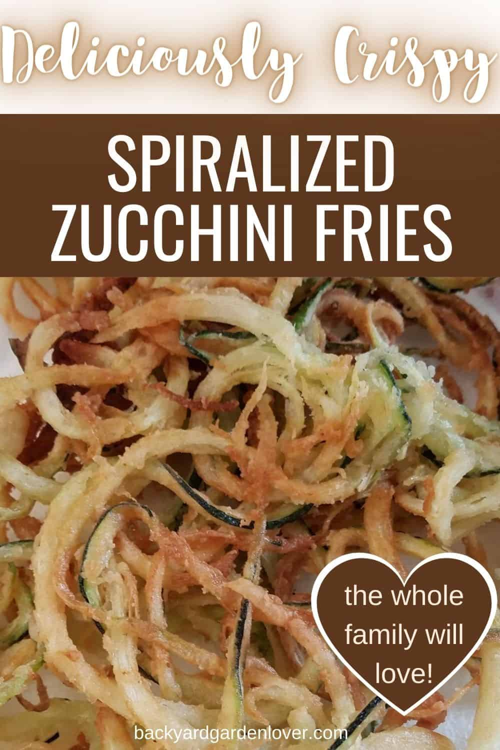 Crispy curly zucchini fries the whole family will love - Pinterest image